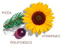Complejo antioxidante patentado